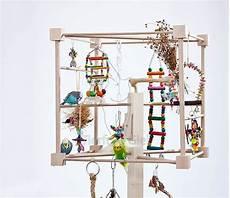 Wellensittich Spielzeug Selber Bauen - quot wellensittiche auf freisitz quot parrot care sittiche