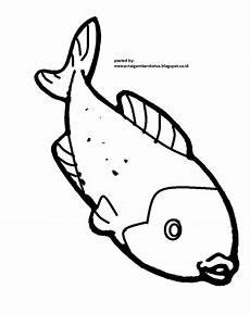 mewarnai gambar mewarnai gambar sketsa hewan ikan 7