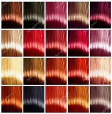 rote haarfarben palette haarfarben palette stockfoto 169 subbotina 80038496
