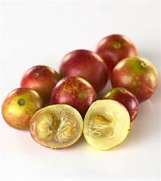 fascinating benefits and facts about camu camu you need to