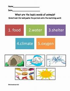 needs of animals worksheets for grade 2 five basic needs of animals by marylou breedlove tpt
