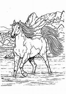 Ausmalbilder Ostern Pferde Ausmalbilder Ostern Gratis Ausmalbilder
