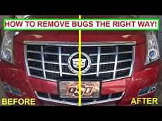 how to clean bugs a car the right way to clean bug guts easy guaranteed results how to clean bugs off a car the right way to clean bug guts easy guaranteed results youtube