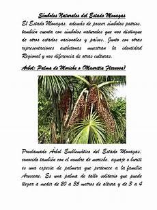 simbolos naturales por estados s 237 mbolos naturales del estado monagas plantas naturaleza