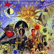 testo e traduzione for the time sowing the seeds of tears for fears con testo e