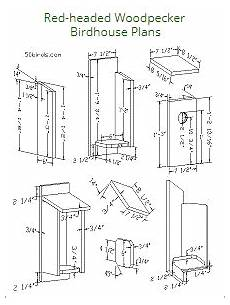 woodpecker bird house plans red headed woodpecker birdhouse plans bird house kits