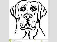Vector Sketch Dog Breed Labrador Retrievers Stock Vector
