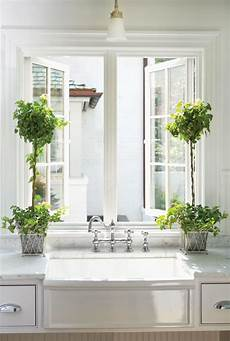 Kitchen Bay Window Plants by 7 Best Houseplants For The Kitchen House Journal