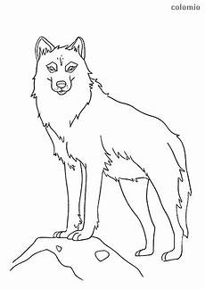 wolves coloring pages 187 free printable 187 wolf coloring