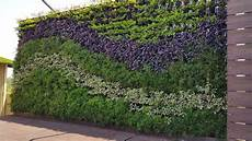 To Plant Vertical Garden by Vertical Gardens India