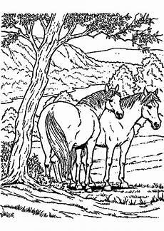 Malvorlagen Pferde Zum Ausdrucken Malvorlagen Pferde Zum Ausmalen Zum Drucken With Regard To