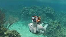 3 21 2013 isla roatan free diving youtube