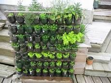 giardino verticale fai da te giardino verticale fai da te tipi di giardini