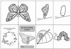 Ausmalbild Schmetterling Und Raupe 19 Best Ausmalbilder Schmetterling Und Raupe