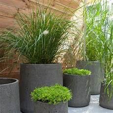 Pot De Fleurs En Ciment Gris Castorama Green Garden