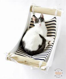 amaca a sedia amaca sedia sdraio per gatto keblog shop