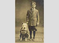 For Over 100 Years, Pitbulls Were Our Babysitters