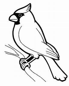 birds to birds coloring pages