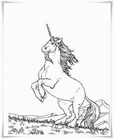 Einhorn Horn Ausmalbild Ausmalbilder Zum Ausdrucken Ausmalbilder Einhorn