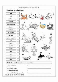 animal worksheets grade 5 13877 vocabulary matching worksheet sea animals hojas de trabajo de vocabulario hojas de trabajo
