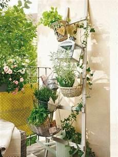 Balkon Ideen Pflanzen - kr 228 uter pflanzen balkongarten mit duftenden topf kr 228 utern