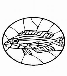 fische 00247 gratis malvorlage in fische tiere ausmalen