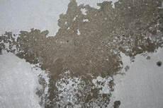 salpeter wand verputzen keller salpeter ausbl 252 hungen abwarten