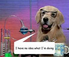 i have no idea how i do it i have no idea what i m doing lab in lab quickmeme