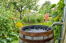 Rainwater Catchment Is Rainwater Harvesting Worth It