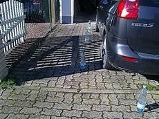 marder auto vertreiben marder im auto erfolgreich vertreiben