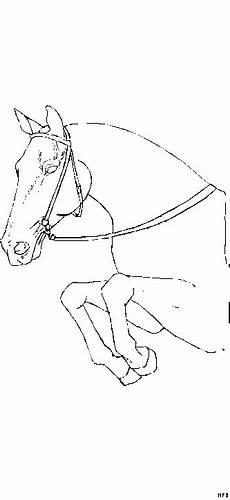 pferd am springen 2 ausmalbild malvorlage tiere