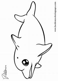 Malvorlagen Kostenlos Delfine Coloring Pages For Adults Dolphins Coloring Home