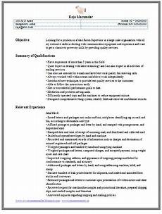 professional curriculum vitae resume template for all seekers exle of a mail clerk