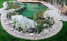 tout savoir sur la piscine biologique bricobistro