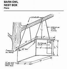 barn owl house plans how to build a barn owl nest modern farmer