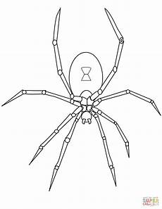 spider coloring page free printable coloring pages