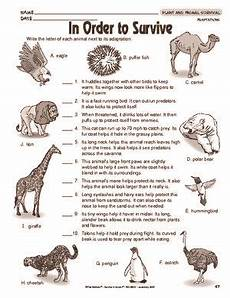 animal science worksheets for high school 14040 results for animal adaptations worksheet guest the mailbox science worksheets animal