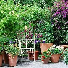 kuebelpflanzen fuer terrasse izleriz k 220 belpflanzen f 220 r den balkon