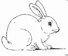 Malvorlagen Hasen Kaninchen Kaninchen Ausmalbild Malvorlage Sonstiges