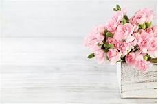 blumen schenken bedeutung valentinstag blumen valentines tag