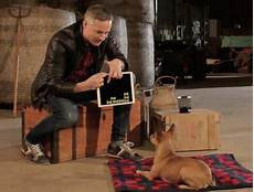 Zauberer Malvorlagen Ragnarok Hunde Reagieren Auf Zauberer Simon Pierro Simon
