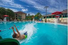 swimming pool swimming pools shades of green
