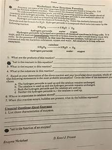 solved name worksheet how enzymes function enzymes are s chegg com