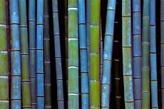 29 ideen f 252 r bambusstangen deko wie im raum verwenden