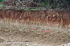 le de sol 15031 partie 2 origine de la mati 232 re des 234 tres vivants le site de svt de barrellon