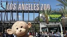 monkeykingdom inspired tour at the lazoo cleverly me south florida lifestyle blog miami