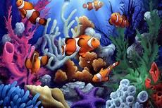 bunte unterwasser korallen und fisch wohnzimmer decor