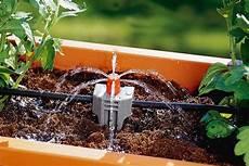 irrigazione a goccia vasi impianto di irrigazione per i vasi in balcone cose di casa