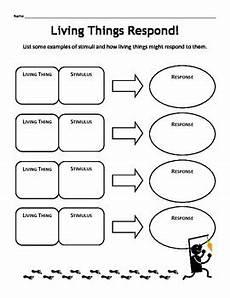 stimulus response worksheet by erin curlee hatfield tpt