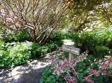 woodland garden photo galleries mcbg inc 2020 fort bragg california